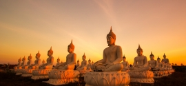Why is Buddhism Dharma relevant to mental health?